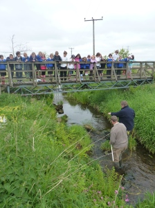 Children watch as David and Willie catch young trout