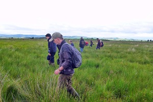 Walking a transect