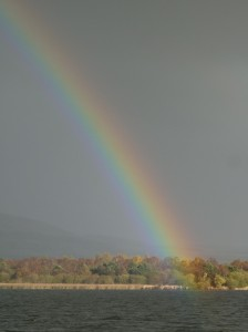A changeable day it turned out to be, with this spectacular rainbow appearing early in the afternoon