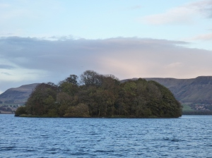 Reed Bower- an island that appeared with the lowering of the loch in the 1840s, and has subsequently been subject to undisturbed natural succession.