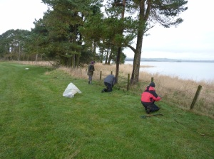 The Sunday group worked in an area of surprisingly rocky ground