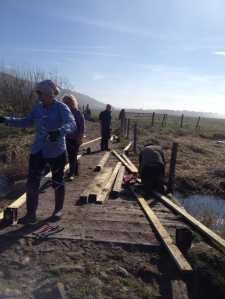 The team hard at work building the barrier and fence.