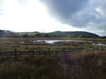 The revived view from the hide